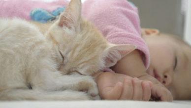 новородено и домашен любимец