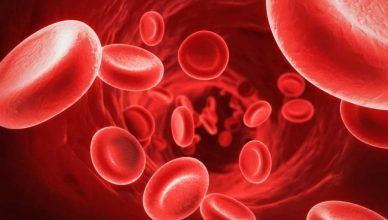 Хемофилия - симптоми, диагноза и лечение при децата